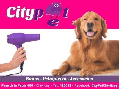 City Pet