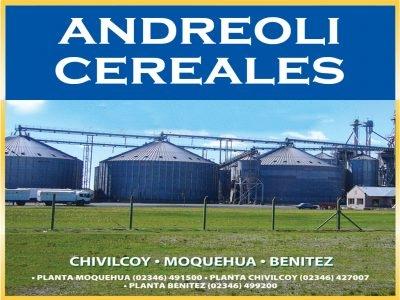 Andreoli Luis y Mario S.R.L.