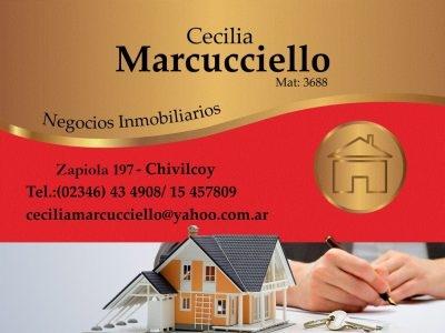 Cecilia Marcucciello