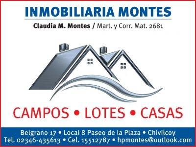 Inmobiliaria Montes