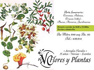 VC Flores y Plantas